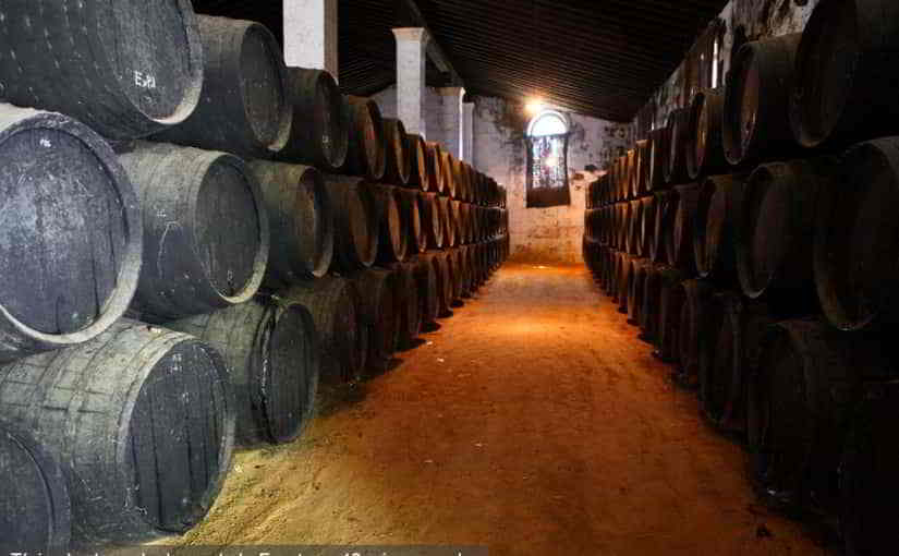 conil-excursiones-bodega-jerez